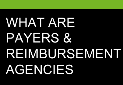 What are payers and reimbursement agencies?